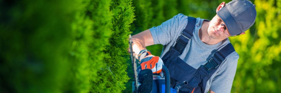 Maintaining Your Yard  So You Don't Have To...