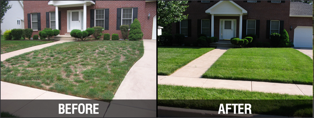 best landscaping  u0026 design services in temple  u0026 killeen tx