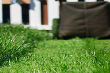 Lawn Care & Maintenance Services Temple TX